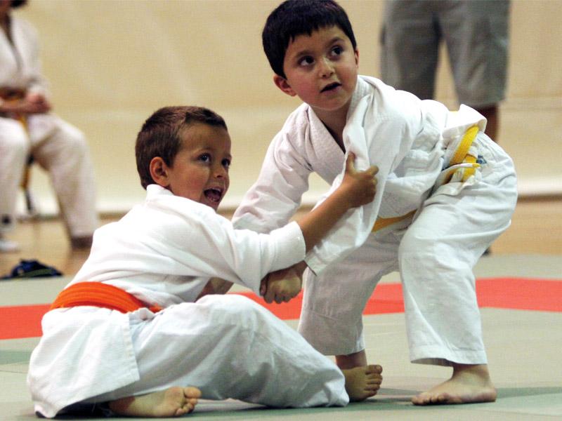 Taller de judo